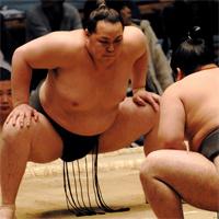 sumo0418