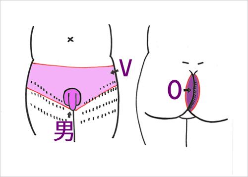 V・男性器・O=V男O。女性に比べて、VもOも範囲が広いようです