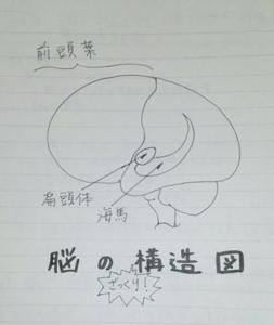 yamatoaya_kurasu_13
