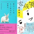 masunoshihara_tops