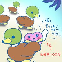 shiqchan_x1019s