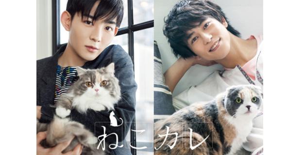 猫と若い男展…伊野尾にそっくり過ぎるイケメン俳優も