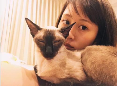 ダレノガレ明美も指原莉乃も中山美穂も。自撮りより高需要かつ好反応の「愛猫」インスタ!!の画像9